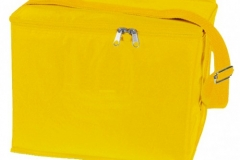cooler-bag-pic1