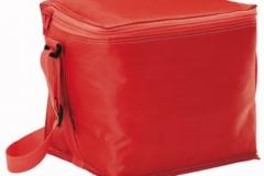 cooler-bag-pic2