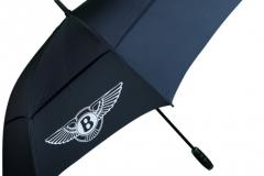 umbrella-pic2